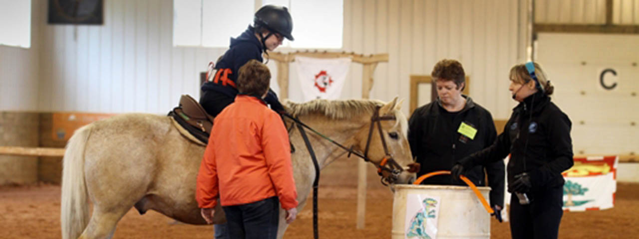 Equine Assisted Wellness