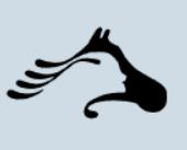 Valley Therapeutic Equestrian