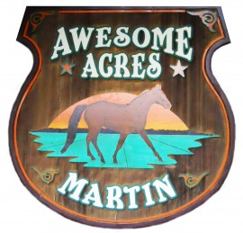 Awesome Acres Therapeutic Riding Centre & Club